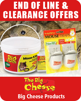 Big Cheese End of Line and Clearance Offers