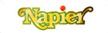 Napier Logo