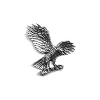 A R Brown Hawk / Eagle / Harris Pewter Pin Badge