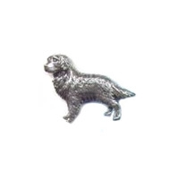 A R Brown Retriever Pewter Pin Badge