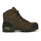 Aigle Altavio GTX Leather Walking Boots (Men's)