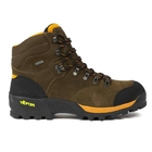 Aigle Altavio Mid GTX Walking Boots (Men's)