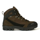 Aigle Landisto GTX Walking Boots (Men's)