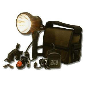 Image of Clulite SL1/PK Shootalite 20W Lamp Kit