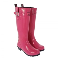 Joules Fieldwelly Gloss (Women's)