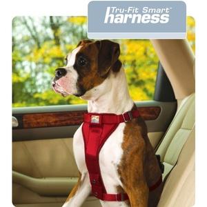 <b>Kurgo</b> Enhanced Tru-Fit Smart Harness Including Seat Belt Tether ...