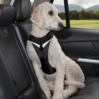 Kurgo Go-Tech Adventure Harness With Seat Belt Tether