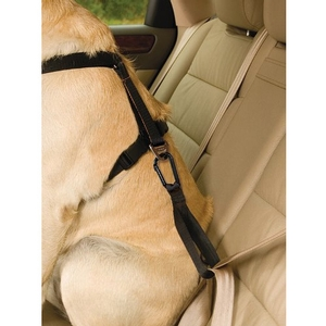 <b>Kurgo</b> Seatbelt Tether with Carabiner - Black