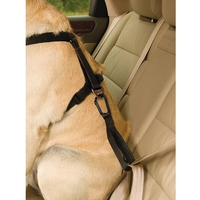 Kurgo Seatbelt Tether with Carabiner