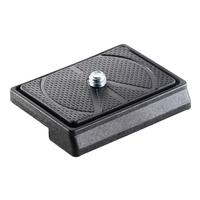 Manfrotto 200LT-PL New LIGHTWEIGHT Rectangular Plate with 1/4'' Screw for 128RC/700RC2 Tripod Heads