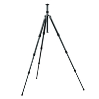 Gitzo GT1531 Series 1 6X TR Mountaineer 3-Section Tripod with G-Lock