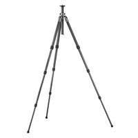 Gitzo GT2541 Series 2 6X Mountaineer 4-section Long Tripod with G-Lock