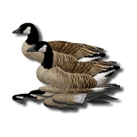 NRA Canada Goose Fold Up Decoy (FUD 6 Pack)