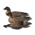NRA Pink Footed Fold Up Decoy (FUD 6 Pack)