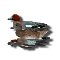 NRA European Widgeon Fold Up Decoy (FUD 6 Pack)