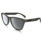 Oakley Metals Collection Frogskins Sunglasses