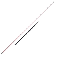 Penn 2 Piece Rampage ll Braid Boat Rod - 8ft 2in - 6-12lb