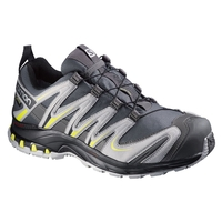 Salomon XA Pro 3D GTX Walking Shoes (Men's)