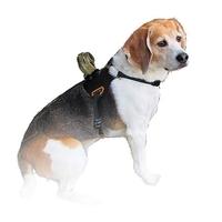Xcel Dog Mount
