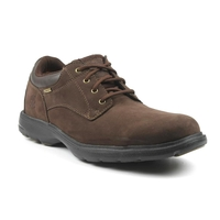 Timberland Earthkeepers Richmont Oxford GTX Shoe